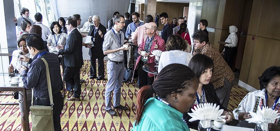 Pesquisadores brasileiros participam da 4ª Plenária do IBPES