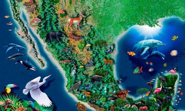 México será sede do COP13 sobre Diversidade Biológica em 2016