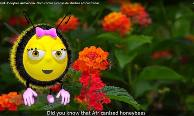 Testes clínicos do soro antiveneno de abelhas vão começar