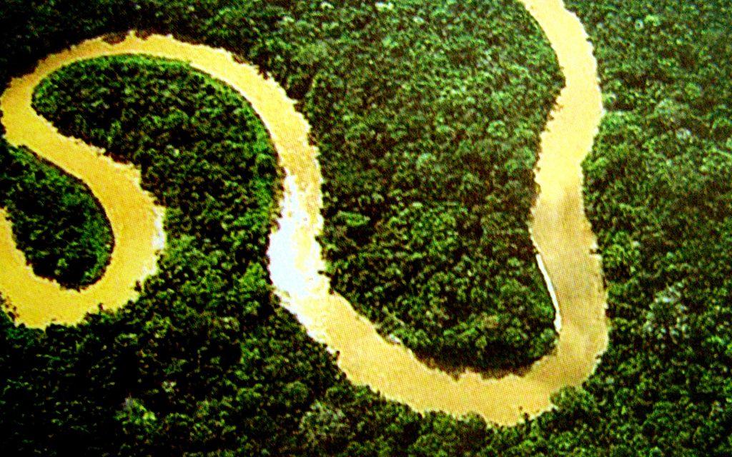 Lei da Biodiversidade está aberta para consulta pública até 2 de maio