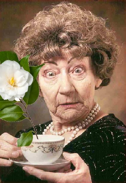 Dona Claudine e o chá