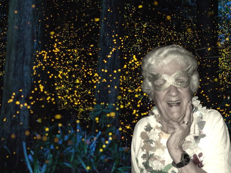 Dona Claudine e os cupinzeiros iluminados