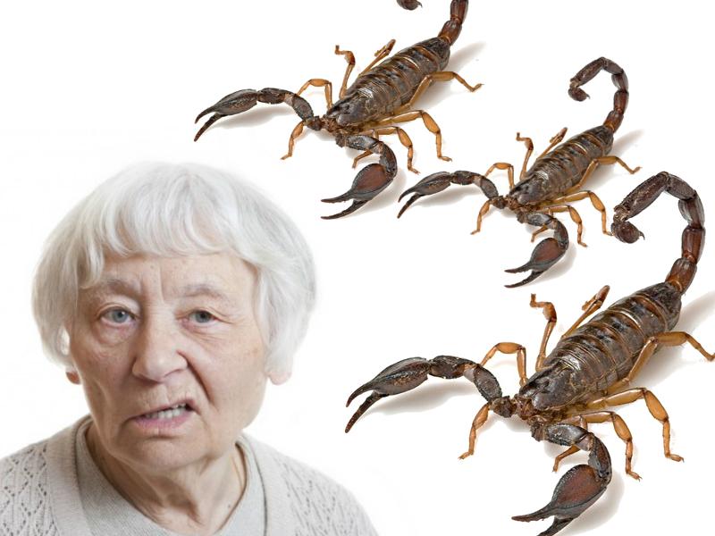 Dona Claudine e o escorpião