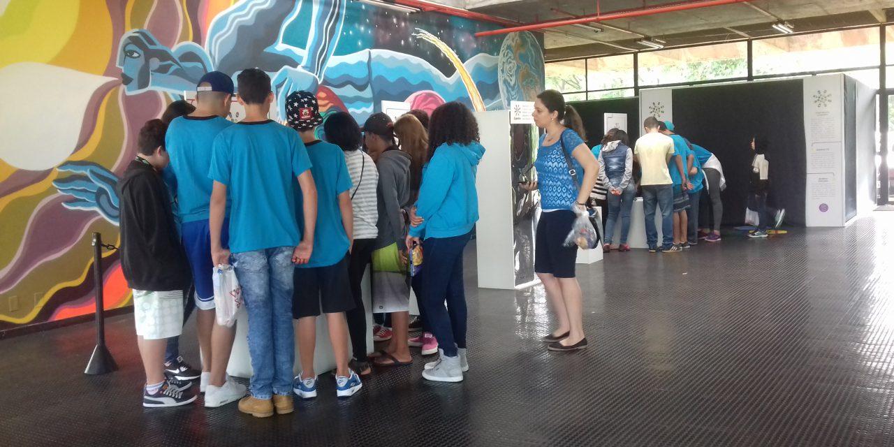 """Todo dia, de segunda a sexta, tem estudantes de uma nova escola de Campinas em visita aos """"Jogos de luz"""""""