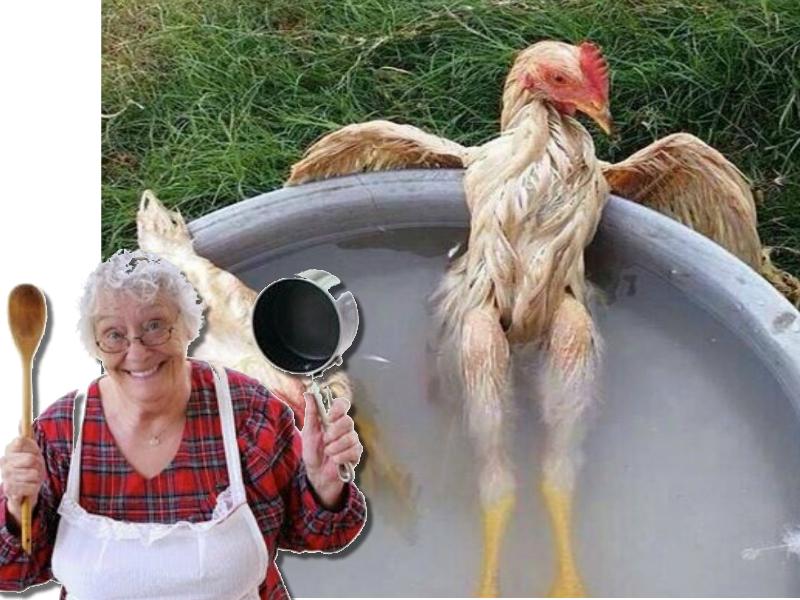 Dona Claudine e os ovos