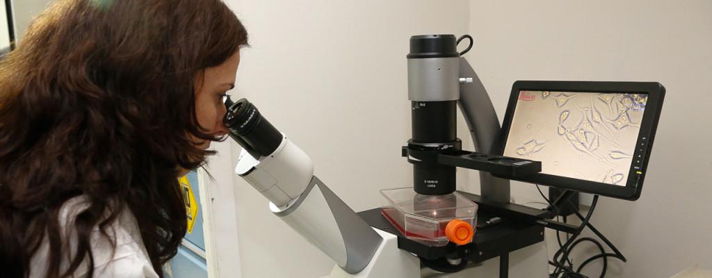 Laboratório de Farmacologia de Peptídeos Intracelulares do ICB