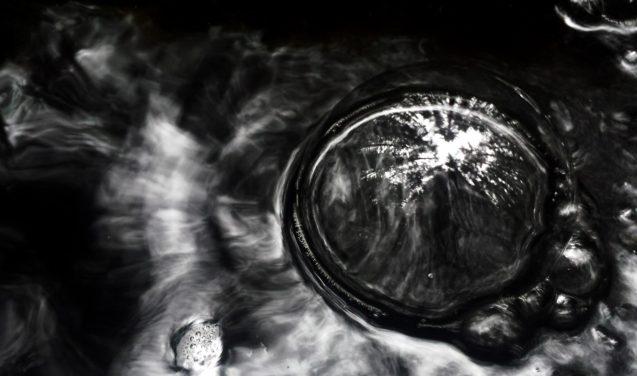 Bolha como espelho na foto vencedora do concurso Capturando ecologia