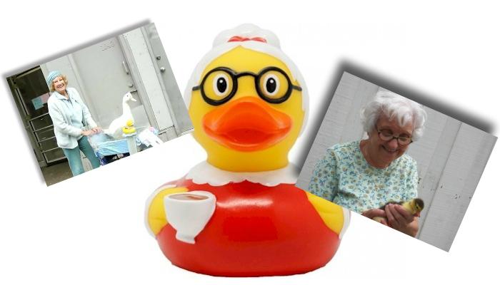 Dona Claudine conhece o assédio sexual no mundo dos patos