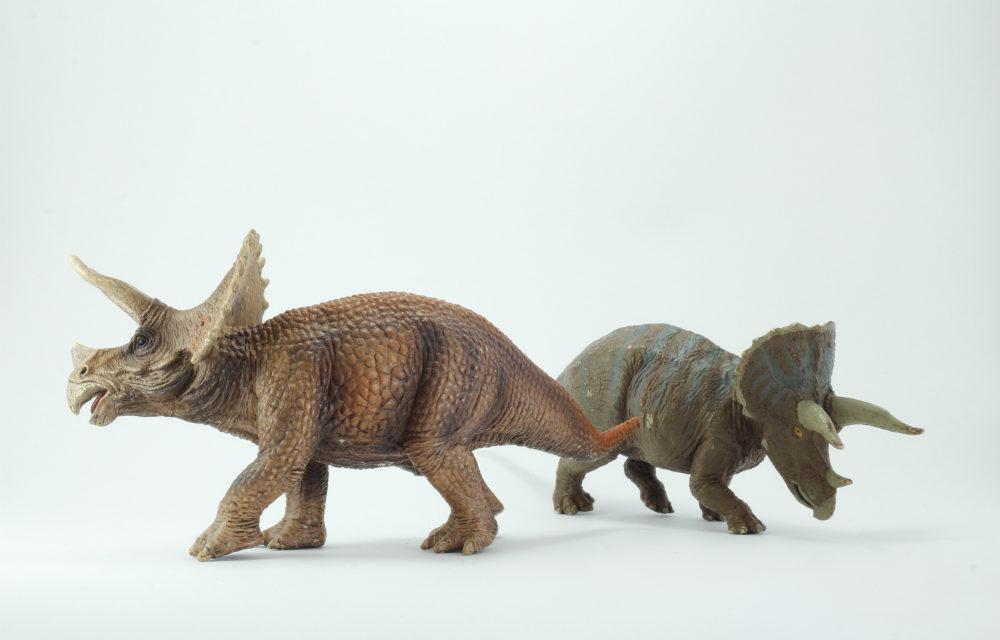 Exposição Dinossauros traz 100 réplicas de répteis e outros seres do passado