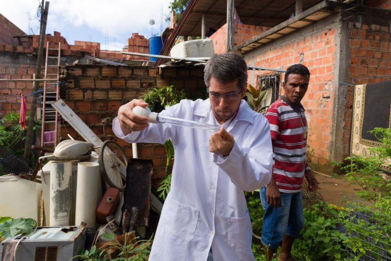 Um grande laboratório de estudos sobre zika, dengue e outras arboviroses