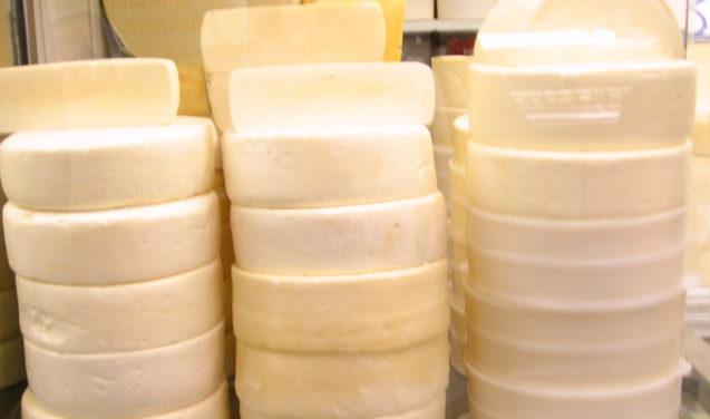 Rede de pesquisa em queijos artesanais brasileiros é lançada