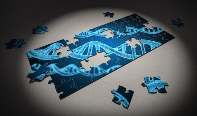 """""""Reacende o medo da ciência mal utilizada"""" – pesquisadora fala sobre edição de genes embrionários"""