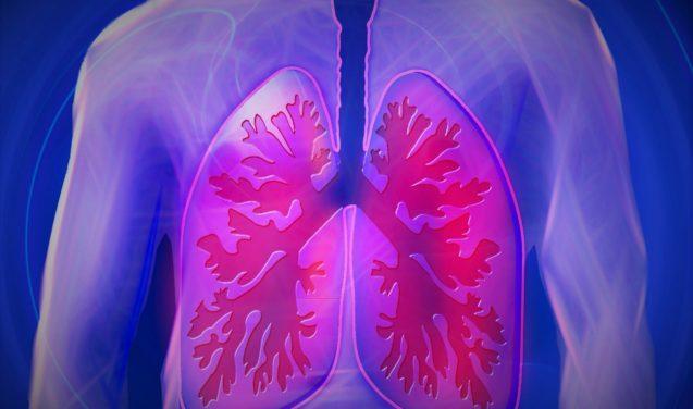 Descoberto caminho para interromper o desenvolvimento da asma alérgica