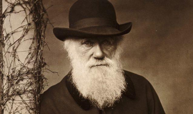 Nova edição destaca o contexto histórico do clássico 'A origem das espécies'