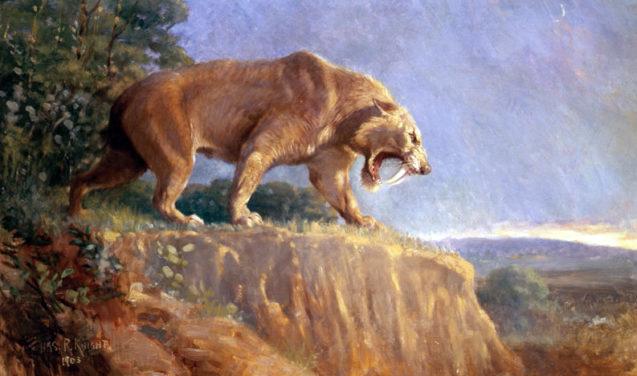 O destino dos mamíferos após a extinção dos dinossauros